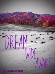 Dream Wide Awake