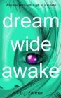 Dream Wide Awake Cover 2500